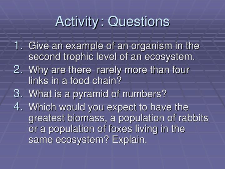 Activity: Questions