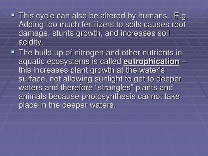 This cycle can also be altered by humans.  E.g. Adding too much fertilizers to soils causes root damage, stunts growth, and increases soil acidity.