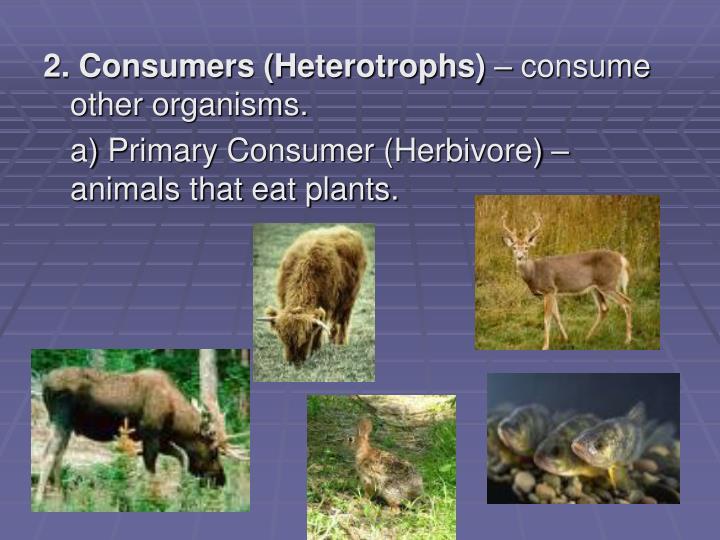 2. Consumers (Heterotrophs)