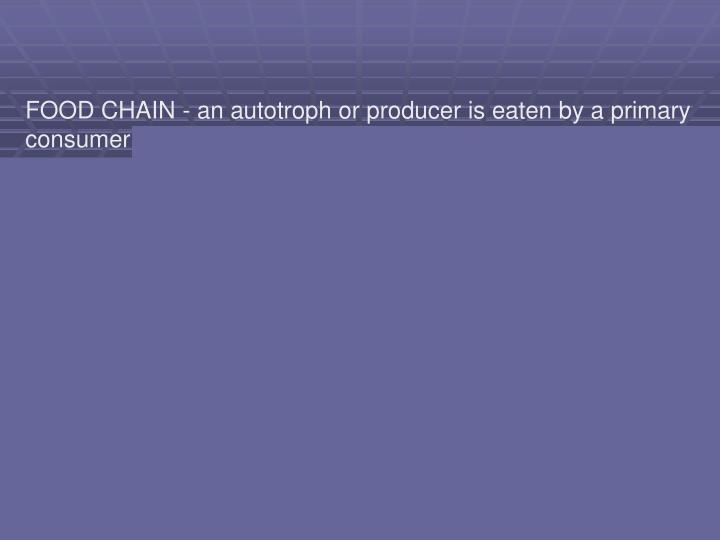 FOOD CHAIN - an autotroph or producer is eaten by a primary