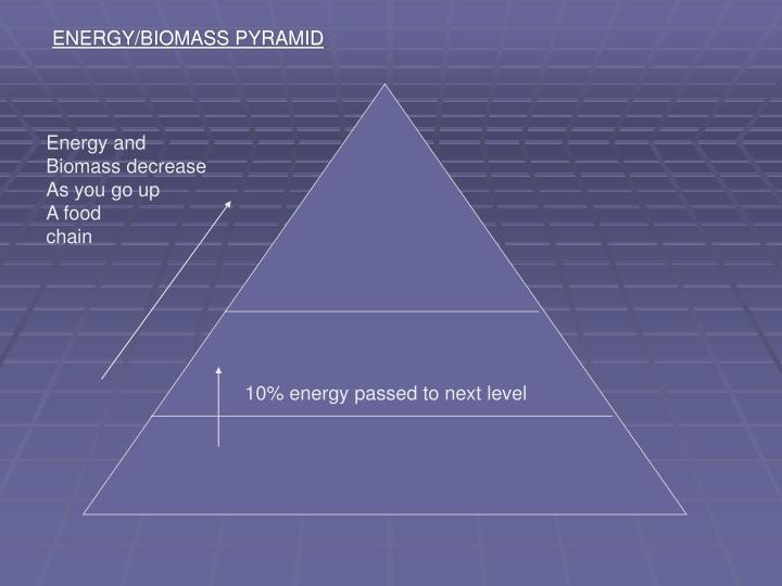 ENERGY/BIOMASS PYRAMID