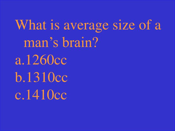 What is average size of a man's brain?