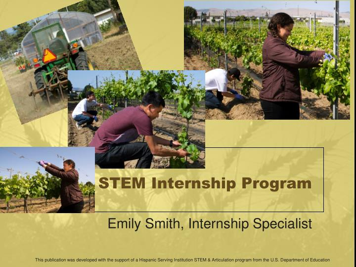 Stem internship program