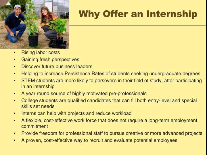 Why Offer an Internship