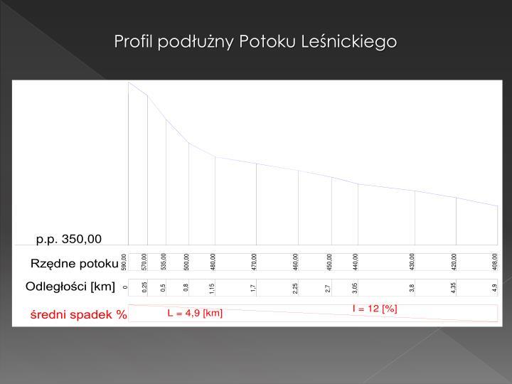 Profil podłużny Potoku Leśnickiego