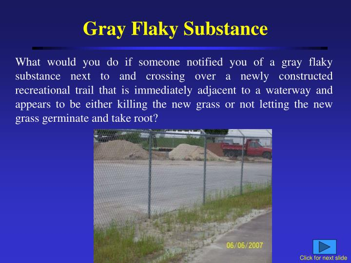 Gray Flaky Substance