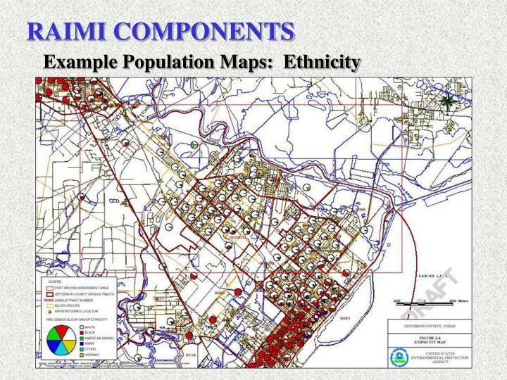 RAIMI COMPONENTS