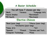 a busier schedule