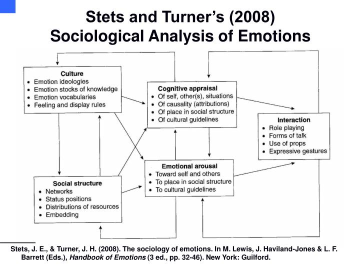 Stets and turner s 2008 sociological analysis of emotions