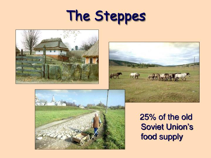 The Steppes