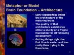 metaphor or model brain foundation architecture