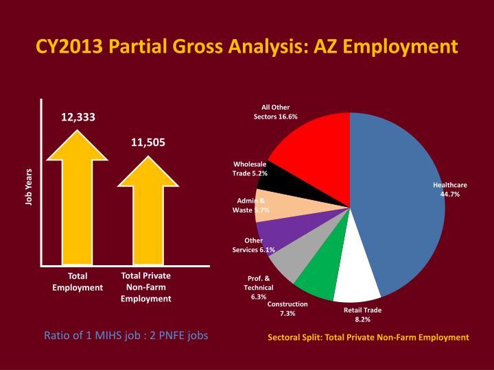 CY2013 Partial Gross Analysis: AZ Employment