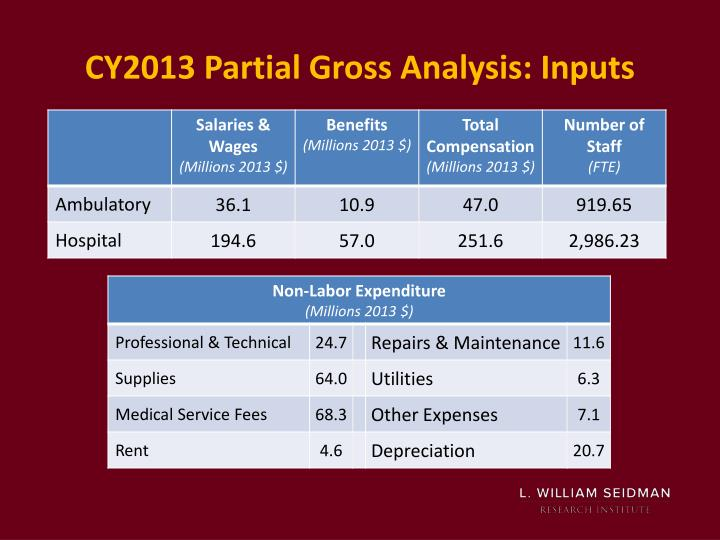 CY2013 Partial Gross Analysis: Inputs