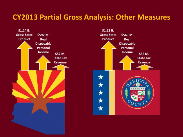 CY2013 Partial Gross Analysis: Other Measures