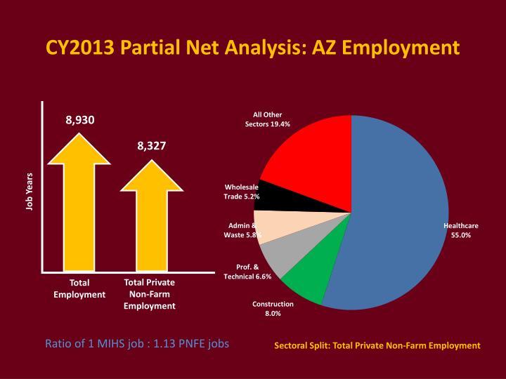 CY2013 Partial Net Analysis: AZ Employment