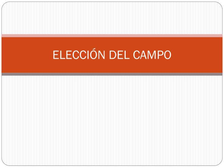 ELECCIÓN DEL CAMPO