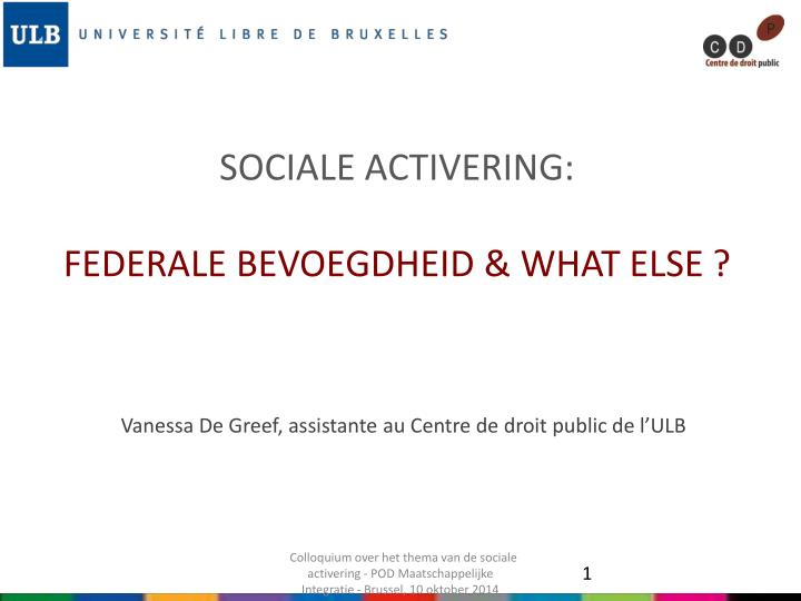 Sociale activering federale bevoegdheid what else