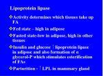 lipoprotein lipase