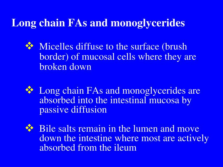 Long chain FAs and monoglycerides