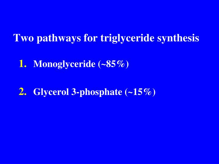 Two pathways for triglyceride synthesis