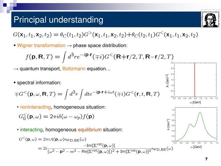 Principal understanding