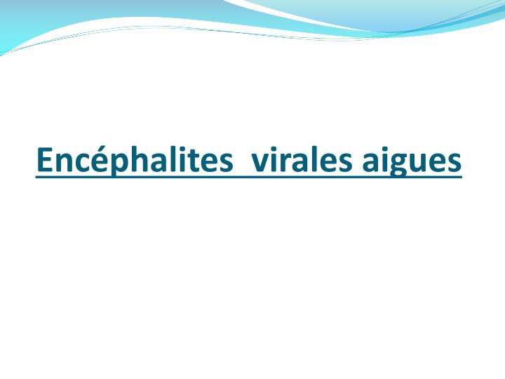 Encéphalites  virales aigues