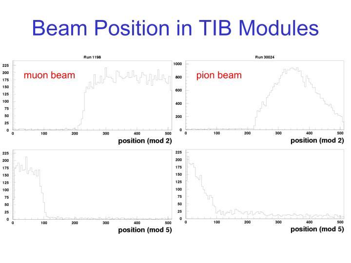 Beam Position in TIB Modules