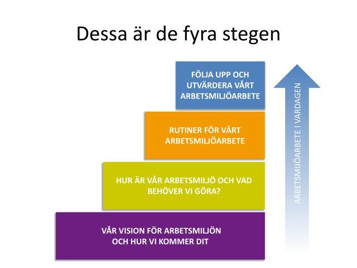 Dessa är de fyra stegen
