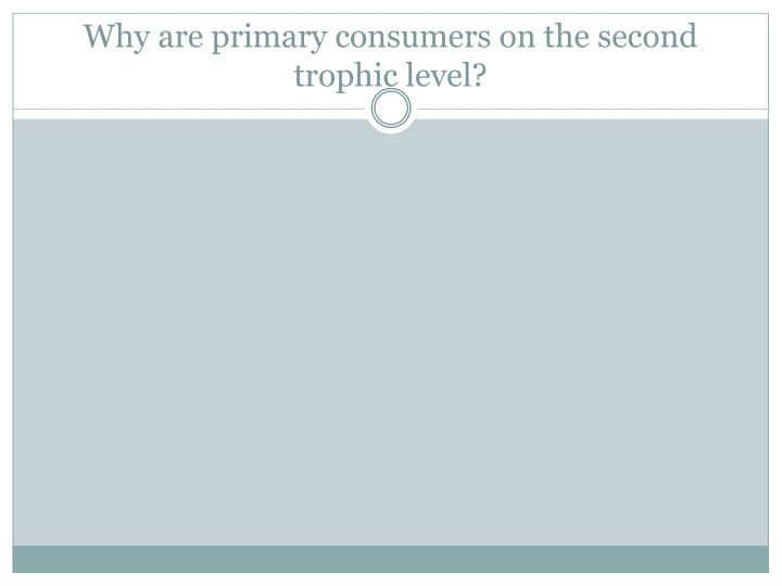 Why are primary consumers on the second