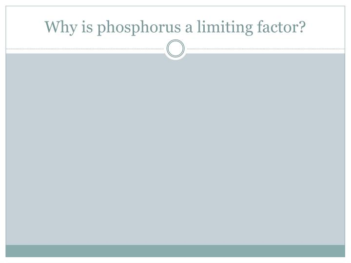 Why is phosphorus a limiting factor?