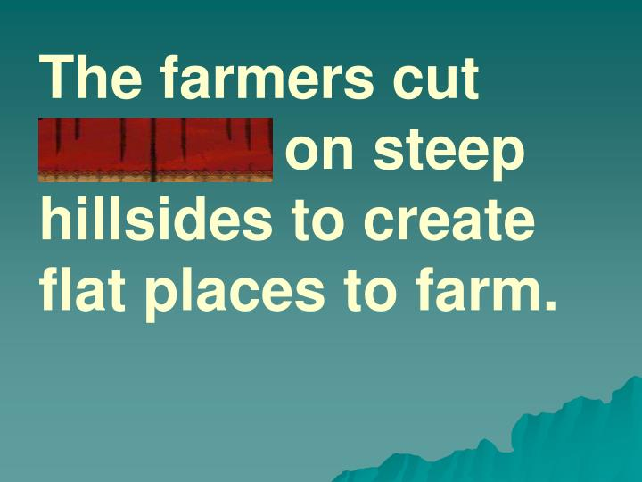 The farmers cut terraces on steep hillsides to create flat places to farm.
