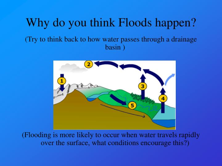 (Try to think back to how water passes through a drainage basin )