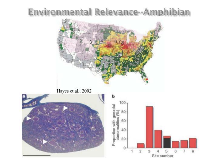 Environmental Relevance--Amphibian