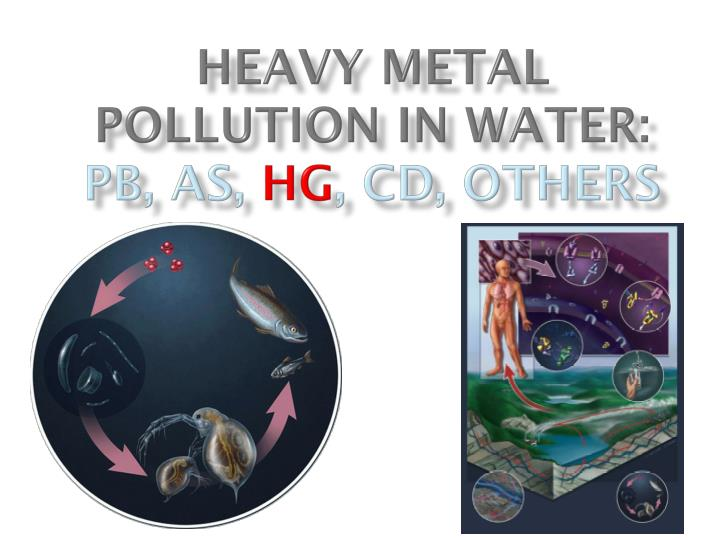 Heavy metal pollution in water pb as hg cd others