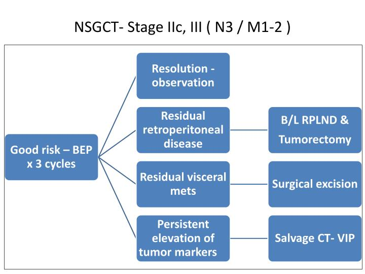 NSGCT- Stage