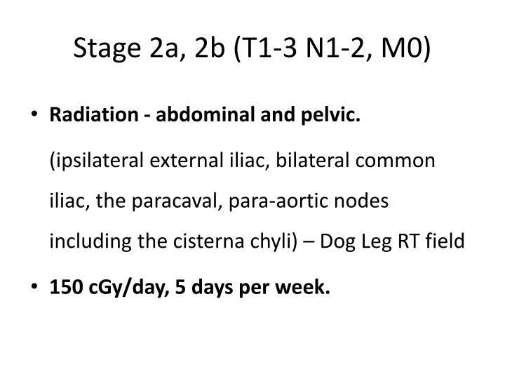 Stage 2a, 2b (T1-3 N1-2, M0)