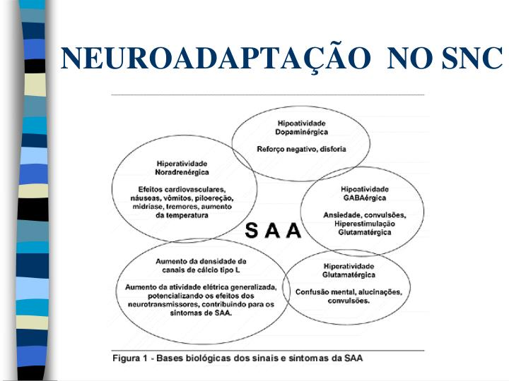 NEUROADAPTAÇÃO  NO SNC