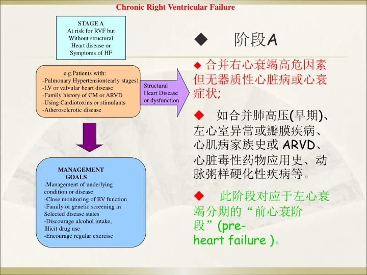 Chronic Right Ventricular Failure