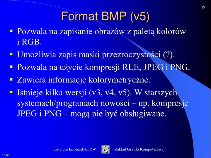 Format BMP (v5)