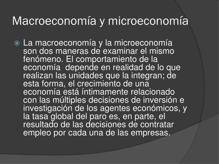 Macroeconomía y microeconomía