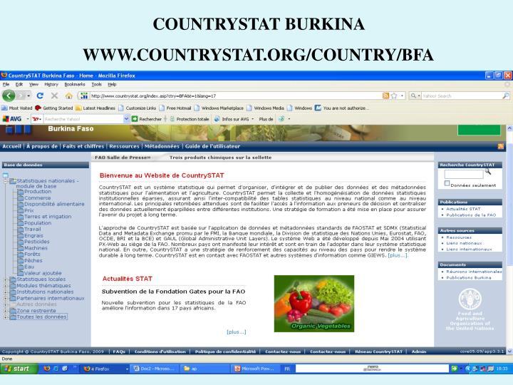 COUNTRYSTAT BURKINA