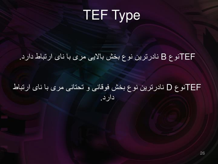 TEF Type