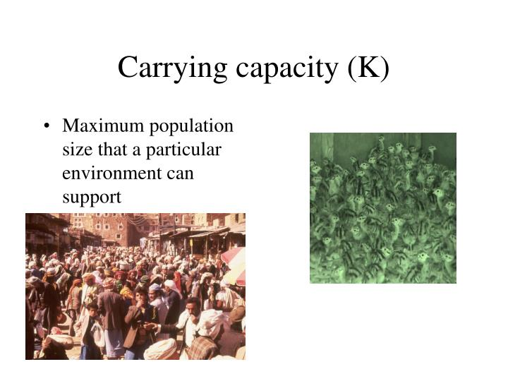 Carrying capacity (K)