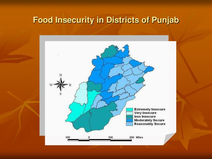 Food Insecurity in Districts of Punjab