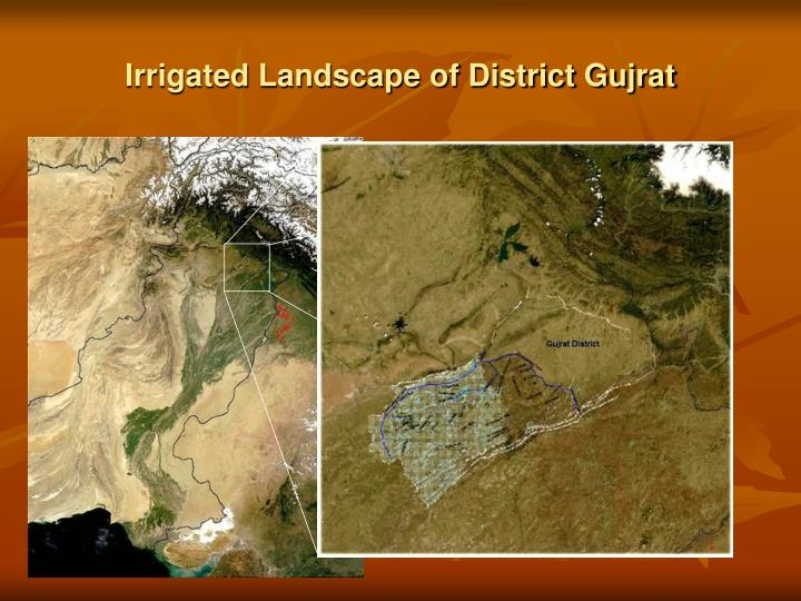 Irrigated landscape of district gujrat