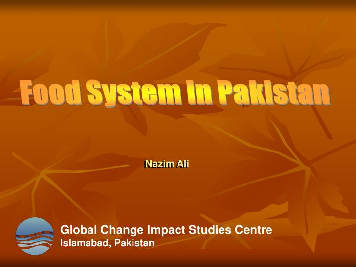Food System in Pakistan