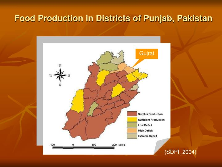 Food Production in Districts of Punjab, Pakistan