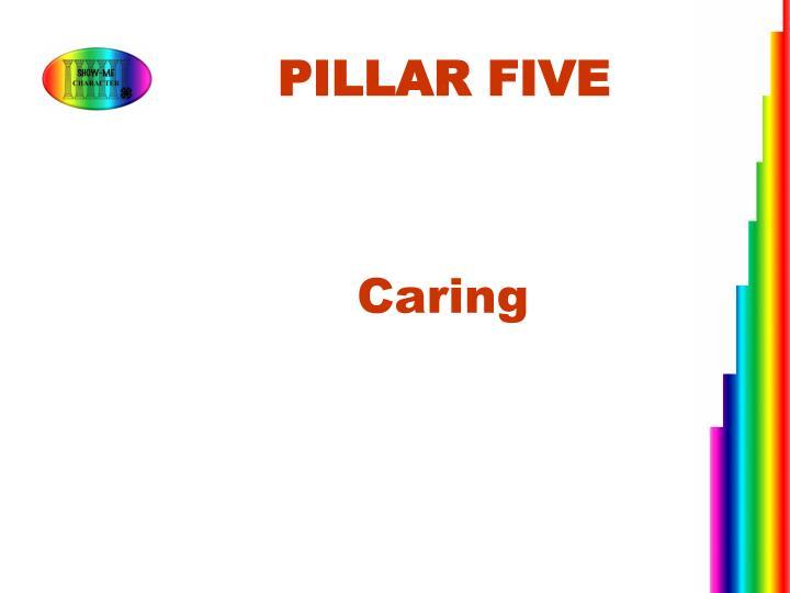 PILLAR FIVE