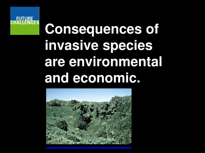 Consequences of invasive species are environmental and economic.