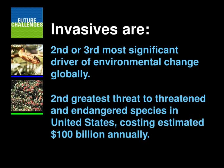 Invasives are: